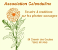 Logo Calenduline